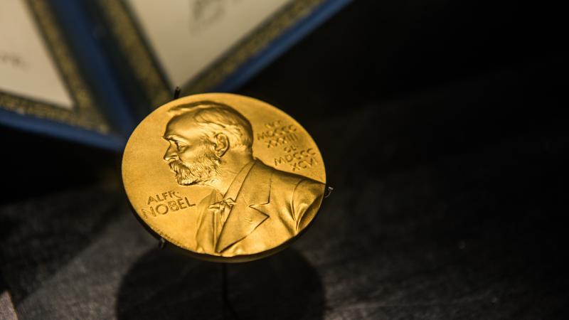 Mujeres galardonadas por el Premio Nobel en estos últimos años
