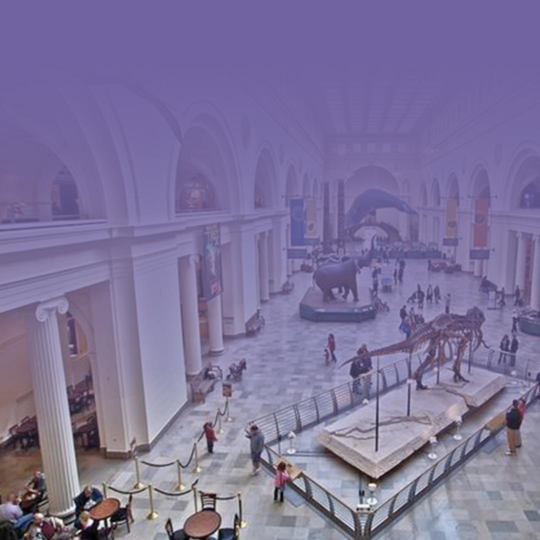 Los museos más prácticos y educativos para visitar este verano