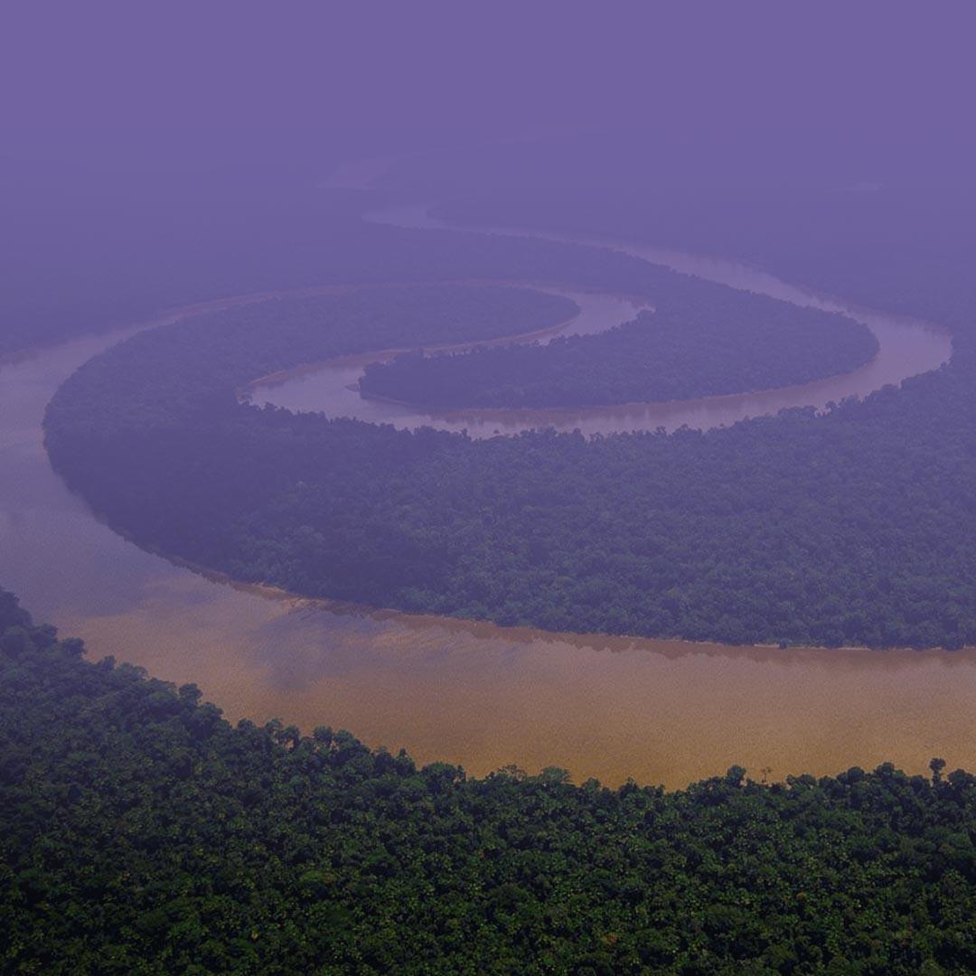 ¿Por qué es importante el amazonia para el mundo?