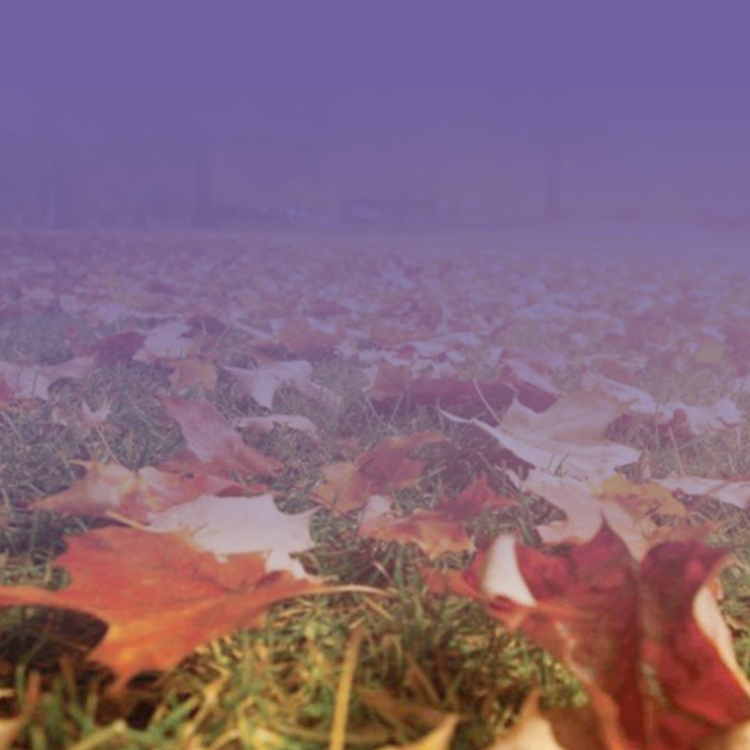 Equinoccio de otoño se retrasa dos días este año